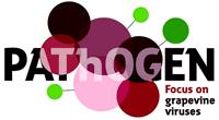 L'IFV crée le premier e-learning sur les viroses de la vigne