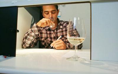 Impact des itinéraires oenologiques sur les résidus dans les vins 2/2