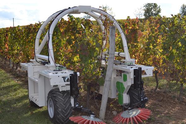 Travail du sol : les stratégies sans herbicides