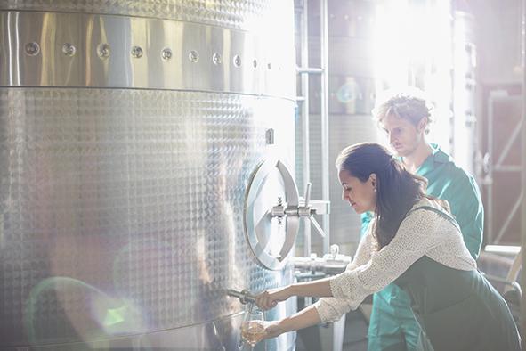 Température et qualité aromatique des vins blancs