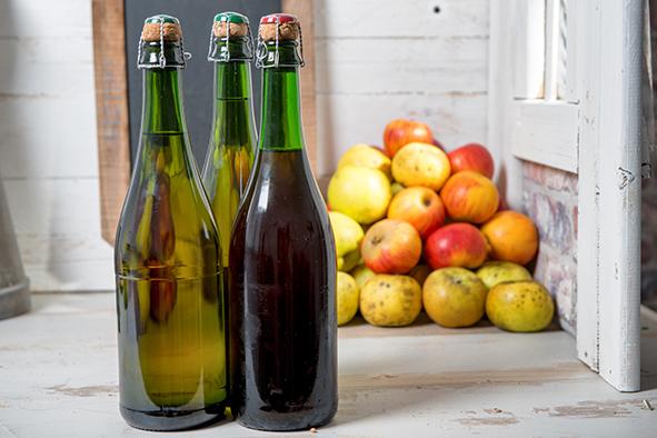 Des outils pour fiabiliser les fermentations des vins et cidres bio